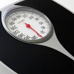 体重と体脂肪の管理ソフト/メタボ対策・糖尿病、エクセル