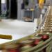 製造業のフリーソフト/在庫管理・生産管理・品質管理